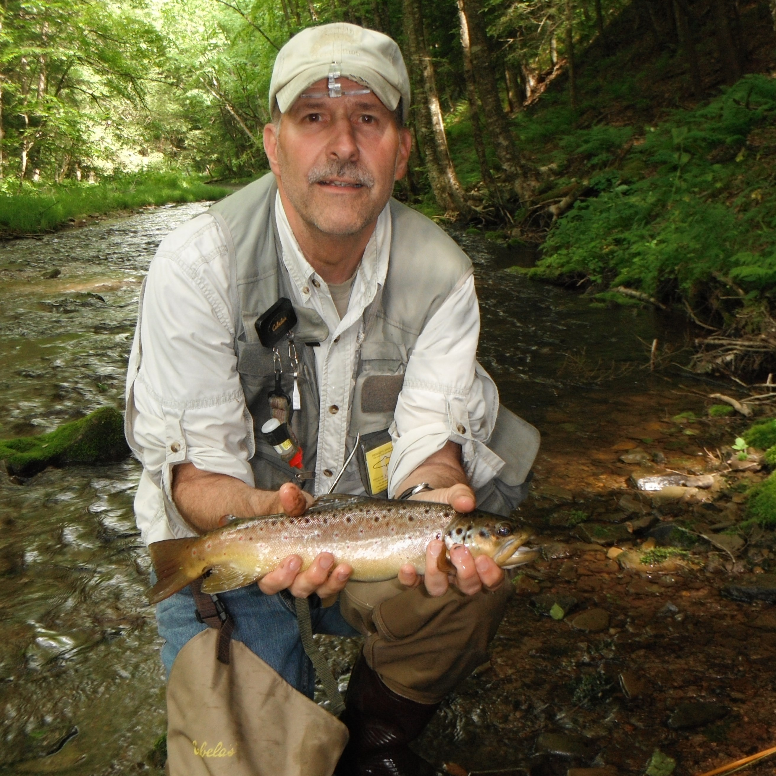 Lyman run west branch pine creek thetroutscout for Trout fishing maryland